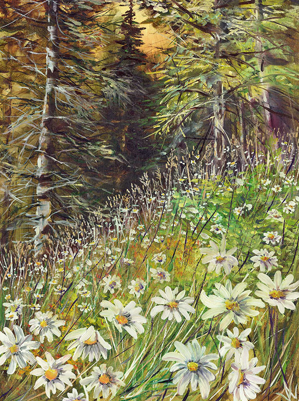 Daisy Forest G1711