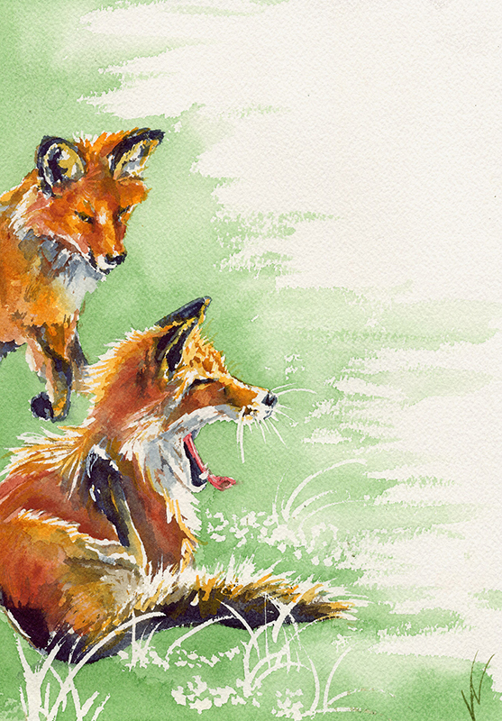 Foxes Two A1101